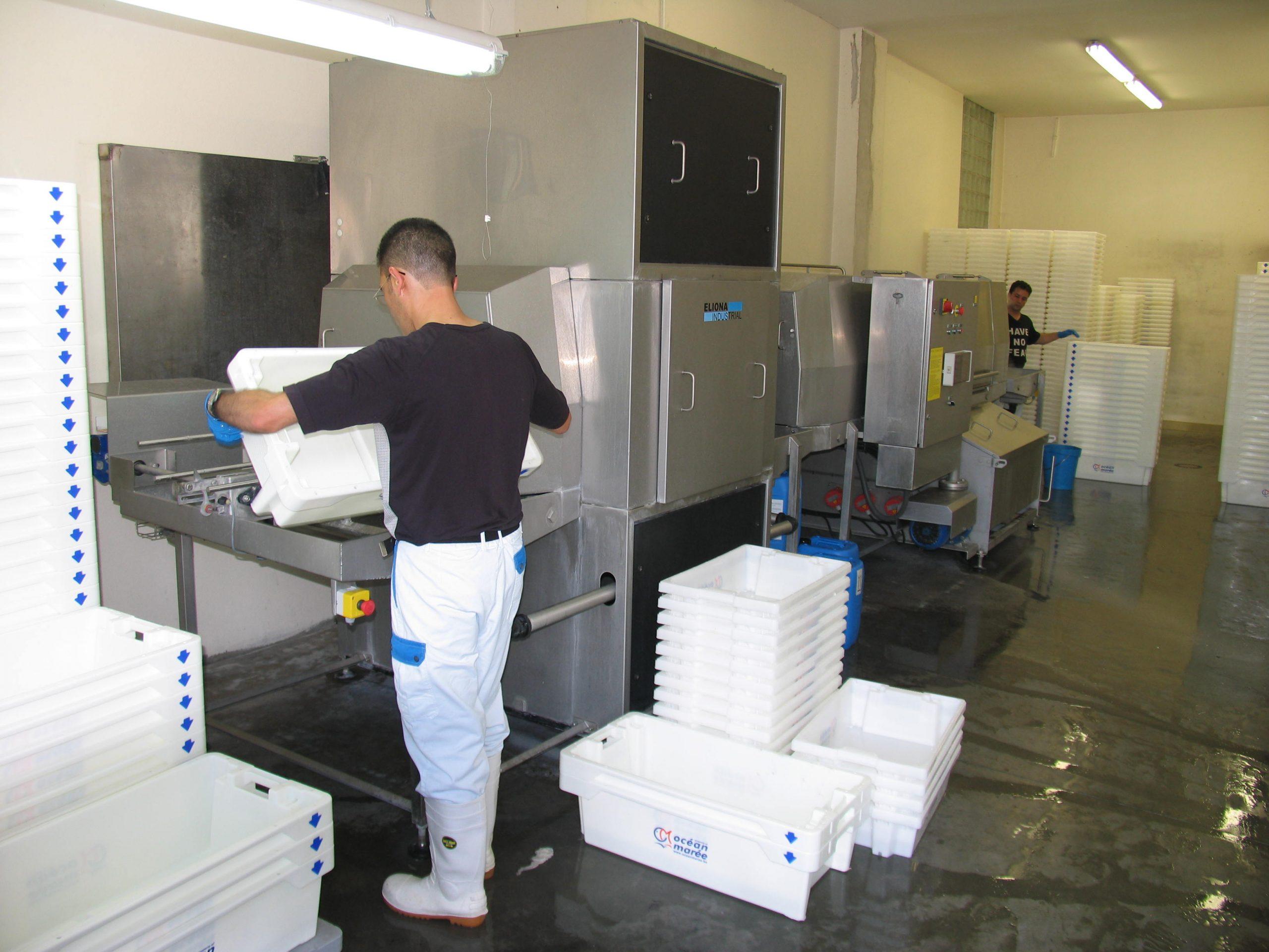 Cretel drying system fish processing industry